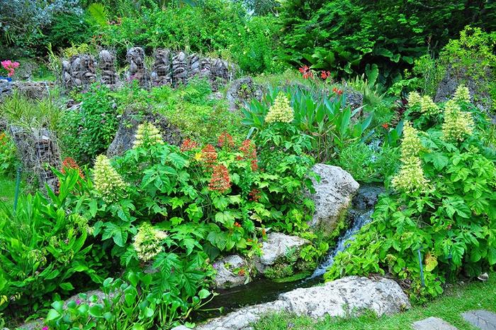 Ботанический сад Андромеда