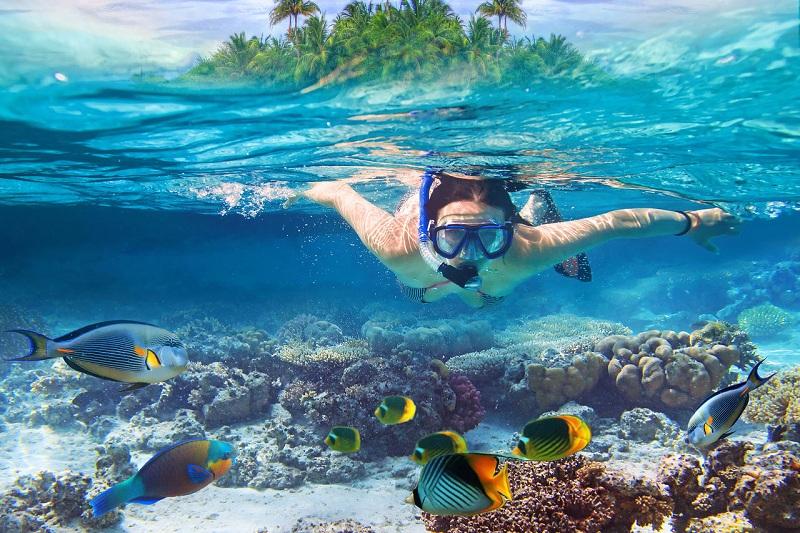 доминикана подводное плавание